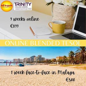 Online Blended or 100% online TESOL