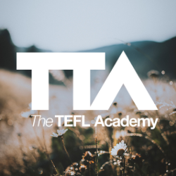 The TEFL Academy Online Level 5 TEFL Course - 168 hours